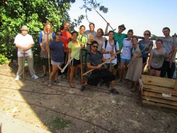 Volunteer Israel Livnot